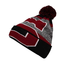 Beanie with overlap logo HC Sparta for adults